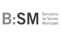 Barcelona Serveis Municipals, S.A.